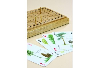 Playing cards plain